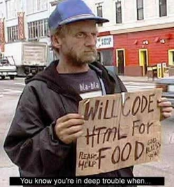 Funny photos - Will code HTML for food