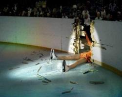Funny photos - Unlucky skater
