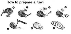 Funny photos - How to prepare a Kiwi