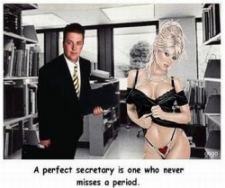 Funny photos - Perfect secretary