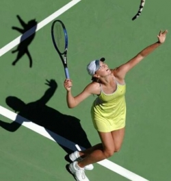Celebrity photos - Sharapova serves a cat