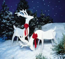 Christmas photos - Wild Christmas Reindeer