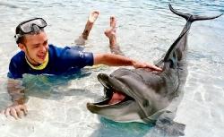 Celebrity photos - Dolphin's friend