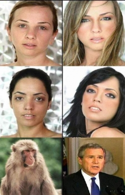 Celebrity photos - Bush make up