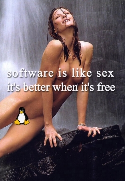 Funny photos - Software is like sex