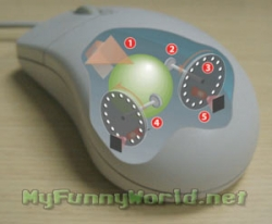 Funny photos - Dead comp mouse