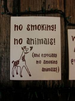 Funny photos - Smoking animals