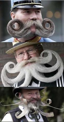 Funny photos - Mustache