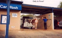 Funny photos - Only in Texas