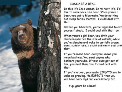 Animal photos - Gonna be a bear