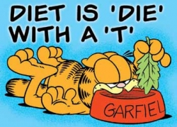 Funny photos - Garfiel diet