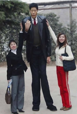 Funny photos - Tallest man