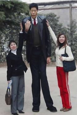 Funny photos - Tallest man