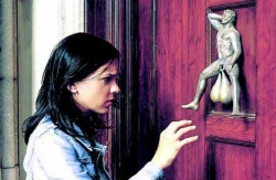 House pictures - Knocker