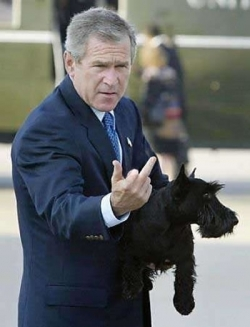Celebrity photos - Bush giving the finger