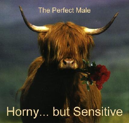 Horny ... but sensitive