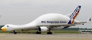 Nils Holgerson Lines
