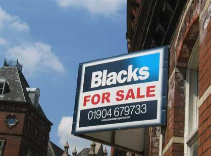 Blacks for sale