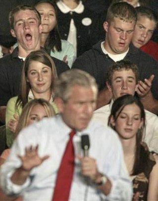 Bored of Bush