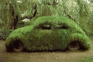Moss car