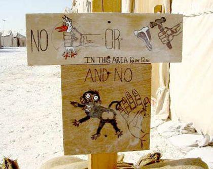 No hands zone