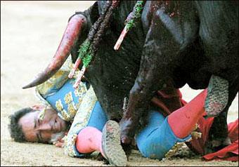 Poor matador