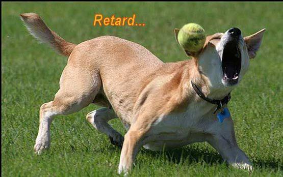 Retard...