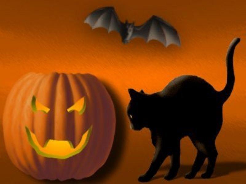 Halloween Matter