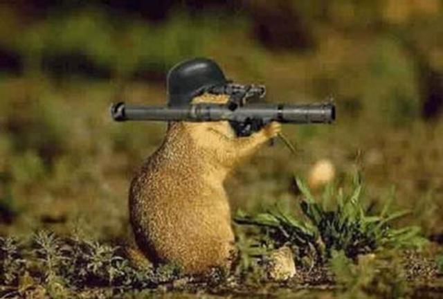 Little gun