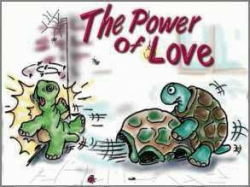 Funny photos - The power of love