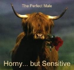 Funny photos - Horny ... but sensitive