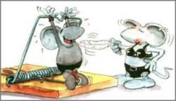 Funny photos - Torture