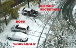 Funny photos - Blonde secretary park
