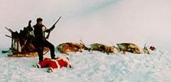 Funny photos - Succesful hunter