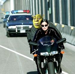 Celebrity photos - Shrek in matrix city