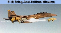 Funny photos - Anti - Taliban