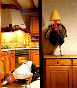 Funny photos - Turkey lamp