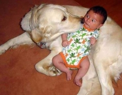 Animal photos - Baby is in fear