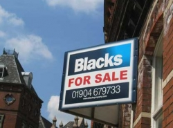 Funny photos - Blacks for sale