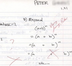Funny photos - Funny algebra solution