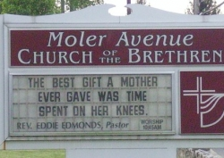 Funny photos - The best gift of mother