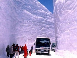 Funny photos - Snowy highway