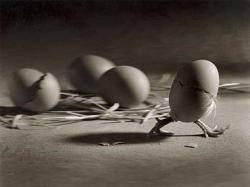 Funny photos - Walking egg