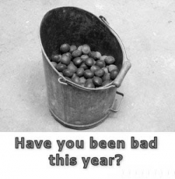 Funny photos - Have you been bad?