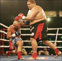 Funny photos - The giant boxer