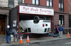 Funny photos - Fat duck surprise