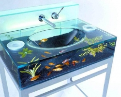 Funny photos - New place for fishes