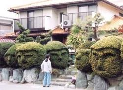 Funny photos - The funny garden