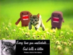 Animal photos - Plz think of the kittens