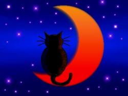 Halloween pictures - Cat on Moon